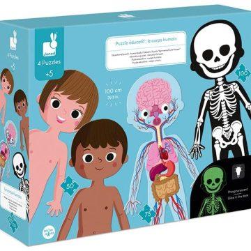 puzzle Ľudské telo
