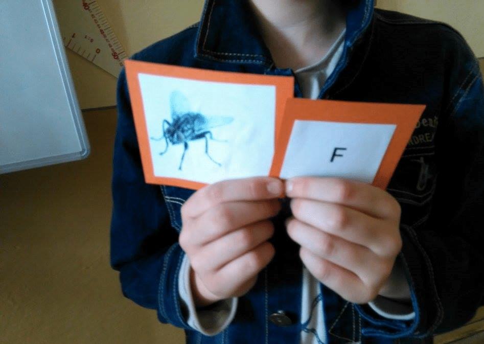 jamita Elipsové kartičky /nástroj na rozvoj vnímania-pozorovania